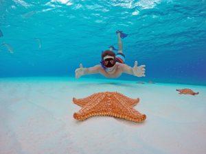 snorkeling riviera maya
